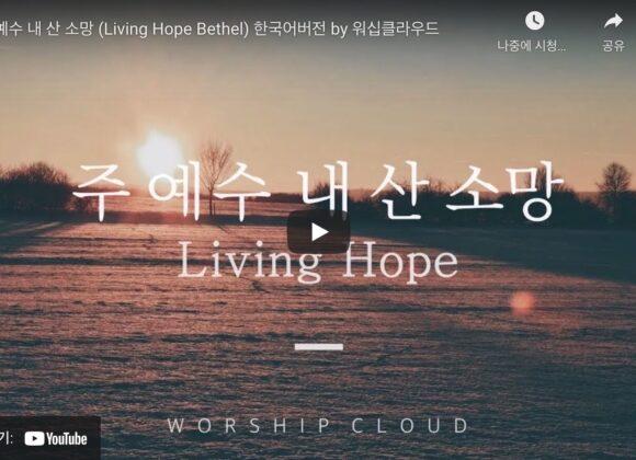 """ANC 예배찬양02 """"주 예수 내 산 소망 (Living Hope)"""""""